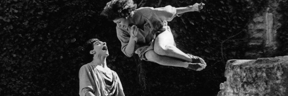40 ans de danse à Avignon (c) Guy Delahaye