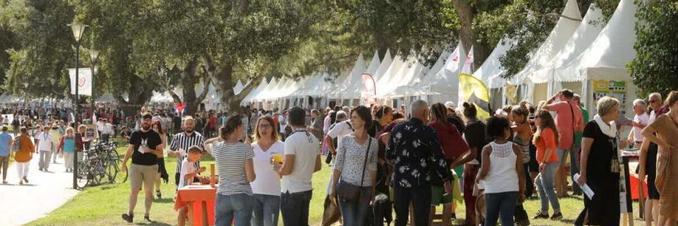avignon-243-associations-au-forum-du-dimanche-8-septembre-1567592608