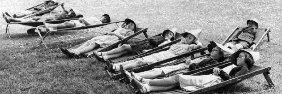 des-coliers-font-la-sieste-en-plein-air-dans-des-transats-saint-park-picture-id965917372